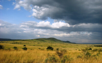 A Kenya Wildlife Safari - Plains of Masai mara