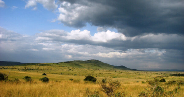 A Kenya Wildlife Safari - Plains of Masai mara