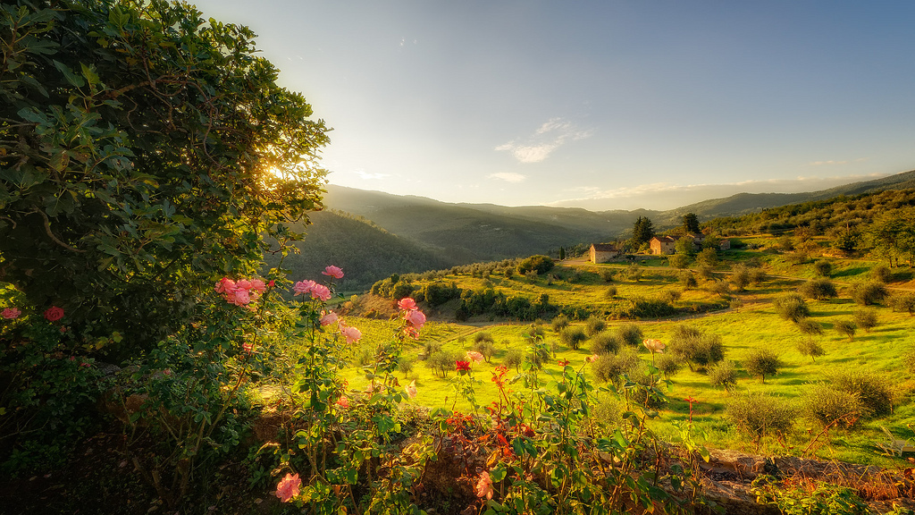 A Peaceful Tuscany Villa Holiday - Tuscany in Italy