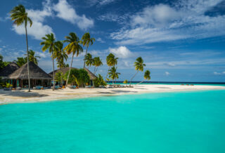 Visit the Maldives