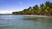 Dive Into the Dominican Republic