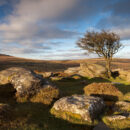 Enjoy wild Camping in the Dartmoor Wilderness